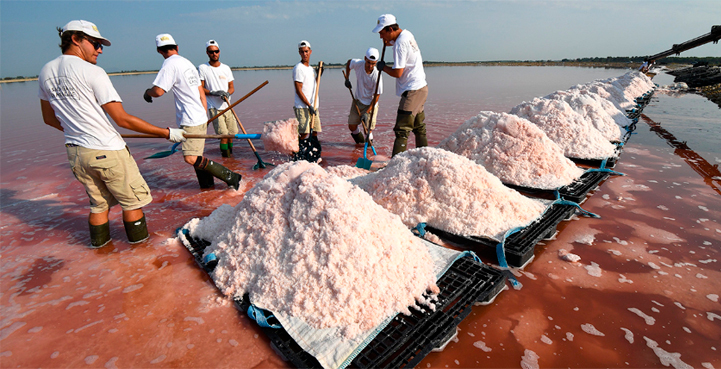 290% of Table Salt Is Contaminated With Microplastics
